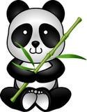 Panda and bamboo Stock Images