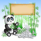 Panda bamboo Stock Photography
