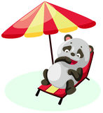 Panda on the beach Stock Photography