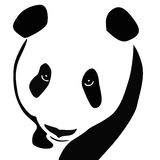 Panda Bear Royalty Free Stock Image