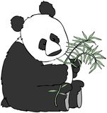 Panda Bear Stock Photo