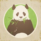 Panda Bear Illustration Stock