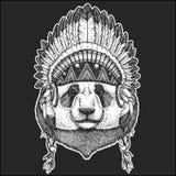 Panda bear Bamboo bear Cool animal wearing native american indian headdress with feathers Boho chic style Hand drawn. Cool animal wearing native american indian Royalty Free Stock Photography