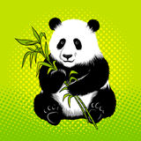 Panda bear with bamboo pop art style vector Royalty Free Stock Image