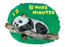 Panda Bear de sono com uma mensagem diária dtodos nós fotos de stock