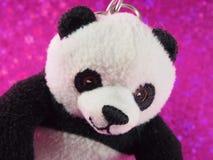 Panda Bear Doll con la mostra del fronte Immagine Stock