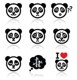 Panda bear icons set - happy, sad, angry isolated on white Royalty Free Stock Photo