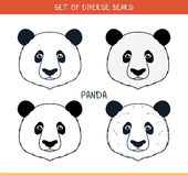 Panda bear. Set  face, heads bear in color, lines Stock Photography