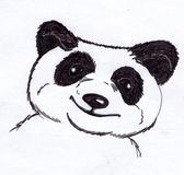 Panda bear sketch stock image