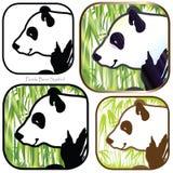 Panda Bear Symbol Fotografía de archivo libre de regalías
