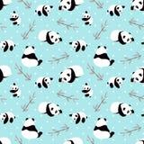 Panda bear vector background. Stock Images