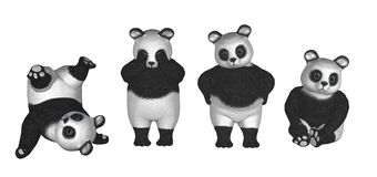 Panda bears Stock Images