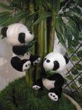 Panda. Black eye Royalty Free Stock Photo