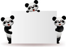 Panda with blank sign Royalty Free Stock Images