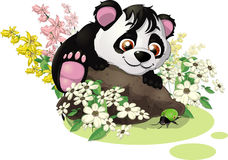 Panda and bug. The panda looks at a small green bug royalty free illustration