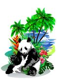 Panda with butterflies on the island. Stock Image