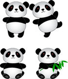 Panda cartoon Stock Photography
