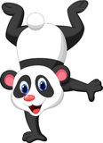 Panda cartoon standing on his hand Royalty Free Stock Images