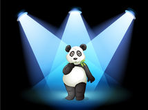 A panda at the center of the stage with spotlights Royalty Free Stock Photography