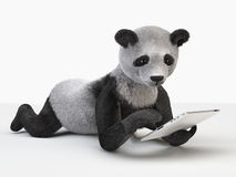 Panda character personage individual furry cartoon cute cheerful guy Stock Photography