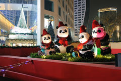 Panda with Christmas hats Royalty Free Stock Images