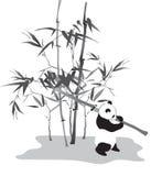 Panda com ramo de bambu ilustração do vetor