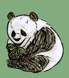 Panda con bambù Fotografie Stock Libere da Diritti