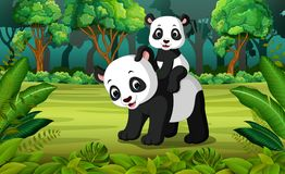 Panda con la panda del bebé en el bosque ilustración del vector
