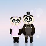 Panda couple Royalty Free Stock Photo