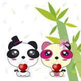 Panda couple royalty free illustration