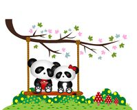 Panda Couple in love sitting on a swing under a tree at the park Stock Photography