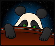 Panda Cub Immagini Stock