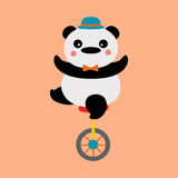 Panda cyclist. Panda acrobat on a unicycle Stock Images