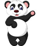 panda de dessin animé Image stock