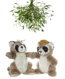 Panda de deux ours Photographie stock libre de droits