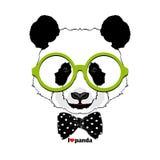 Panda de mode en verres Photographie stock