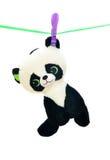 Panda del juguete en la línea de ropa fotografía de archivo