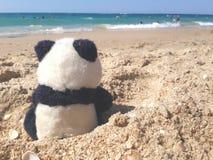 Panda, der das Meer aufpasst Lizenzfreies Stockfoto