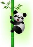 Panda die bamboeboom beklimt Stock Afbeeldingen
