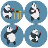 Panda dipendente delle reti sociali Immagini Stock Libere da Diritti