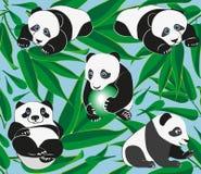 Panda divertente sui precedenti del ramo di bambù Reticolo illustrazione di stock