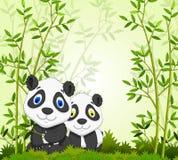 Panda divertida de la historieta con el fondo de bambú del bosque Fotografía de archivo