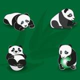 Panda drôle sur le fond de la branche en bambou positionnement illustration libre de droits
