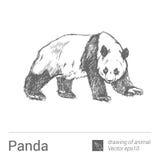 Panda dra av djur, vectore Arkivbild