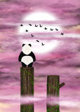 Panda dreamer and pink clouds Royalty Free Stock Photo