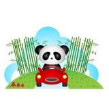 Panda driving a car Royalty Free Stock Image