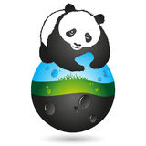 Panda and the earth symbol Royalty Free Stock Image