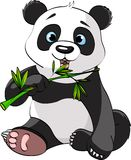 Panda eating bamboo. Baby Panda Sitting And Munching On Bamboo royalty free illustration
