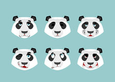 Panda emotion. Set expressions avatar Chinese bear. Animal good Royalty Free Stock Photo