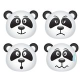 Panda expressions Royalty Free Stock Image